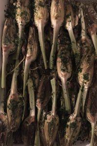 Piatto Libera Osteria - Carciofini al forno Km Zero